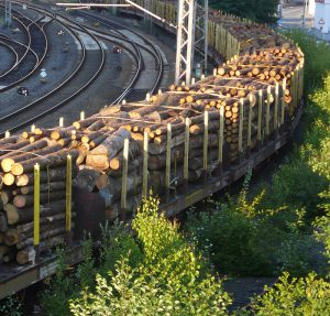 Holztransporte Eisenbahntransport / Log Lines