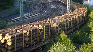 Holztransport, Holzhandel - Rohholz kaufen